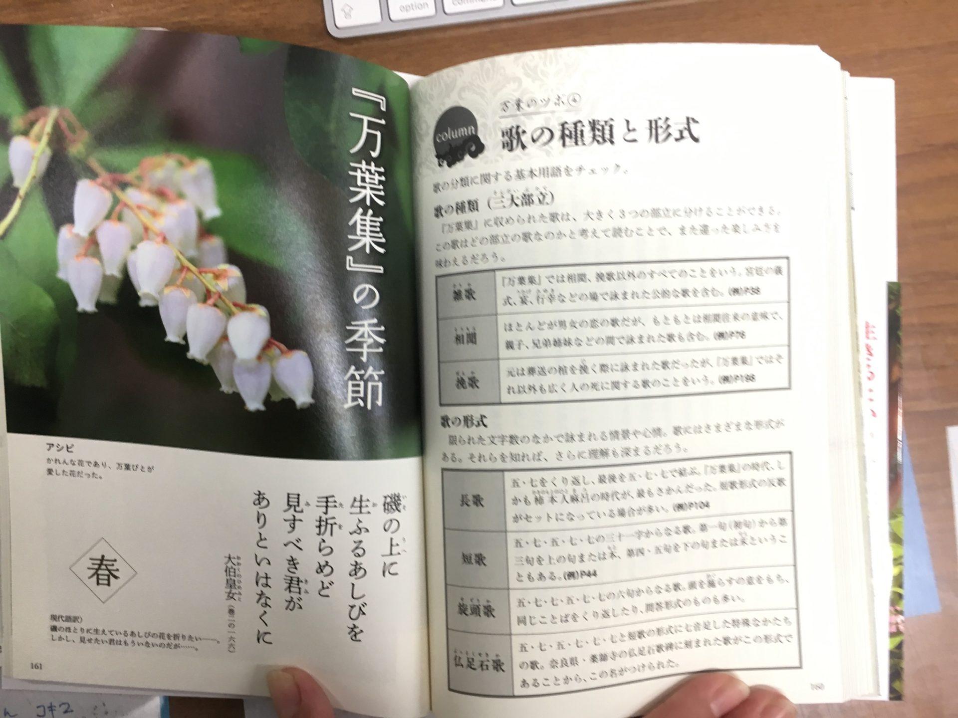 ページ見本